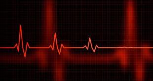 Heartbeat Law