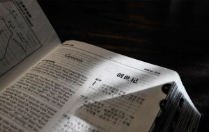 Chinese version NIV Bible