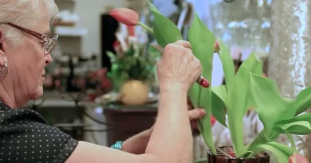 Photo of Washington florist fined, ordered to create same-sex wedding arrangements