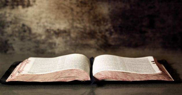 Photo of Language proves God's existence, professor says