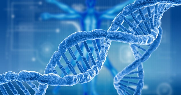 Human Genome Project-Write
