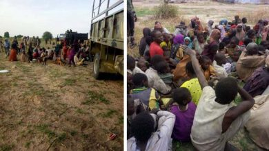 Photo of Nigerian troops rescue hostages used a sex slaves, forced labor