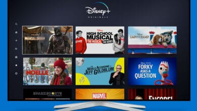 Photo of Family-centric Disney Plus leads November streaming lineup
